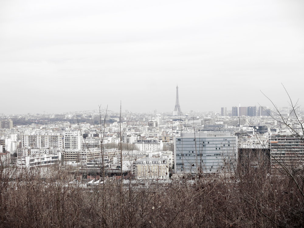 The view across Paris on a misty morning, near the area where I stayed.