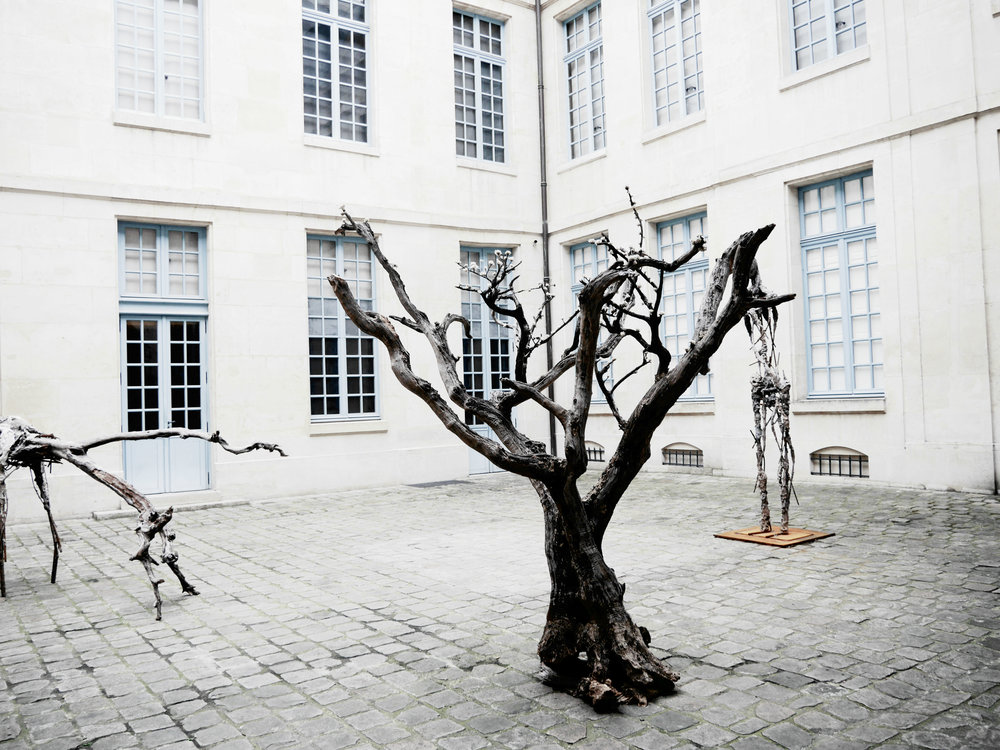 The courtyard of the Museum of Hunting and Nature in Paris. It's a little known place which I highly reccommend.