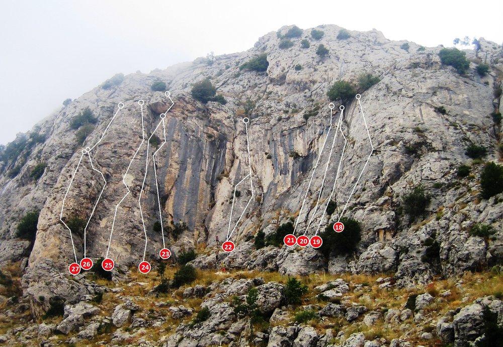 harisa-rev1-3.jpg