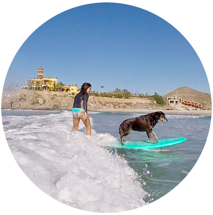 surf_lessons.jpg