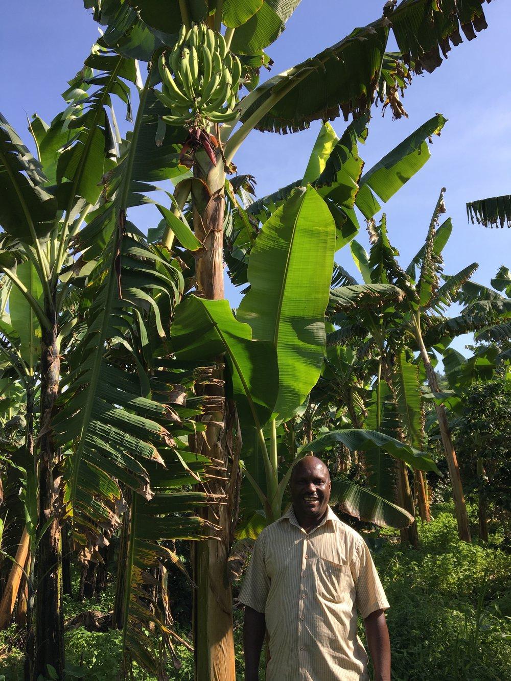 James - proud plantain papa!