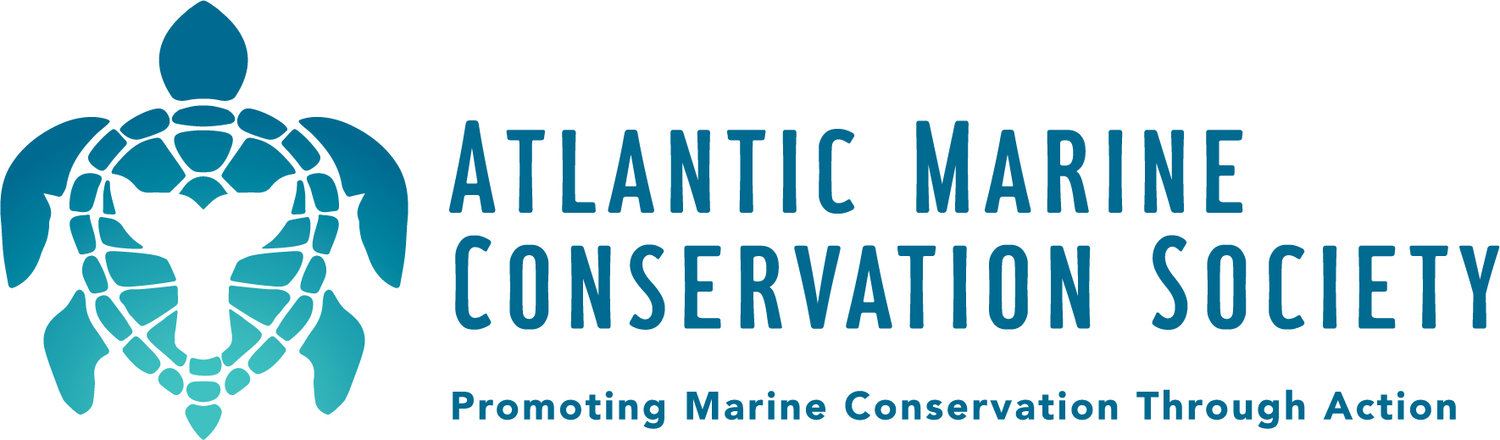 Atlantic Marine Conservation Society