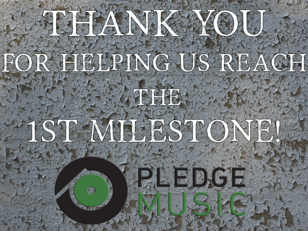 Hi everyone!  We just surpassed $850 on Pledge Music, our first preliminary goal, which will fund the production of CDs and T-Shirts. You guys ROCK! In the past 24 hours we've received over $500 in pre-orders and are super close to our next milestone of $1,000, 10% of our $10,000 goal. I want to say thank you from the bottom of my heart to everyone who has pre-ordered so far - your generosity and support is making this album possible.  Because we have reached our preliminary production goal, limited edition, exclusive vinyl will become available tomorrow. Parkway Divides is a concept album containing two sides - Northbound and Southbound - and the design of the vinyl is inspired by vinyl records of the 1970s with a beautiful full color jacket and design. This vinyl will never be available again, so check back tomorrow if you want to pick up a copy at  http://pledgemusic.com/illadvised  and share the pre-order campaign with your friends and family so we can reach that $10,000 goal!  Again, thank you SO MUCH for all the pre-orders so far. I'm so excited for everyone to hear this album.  Love and thanks,  Harry