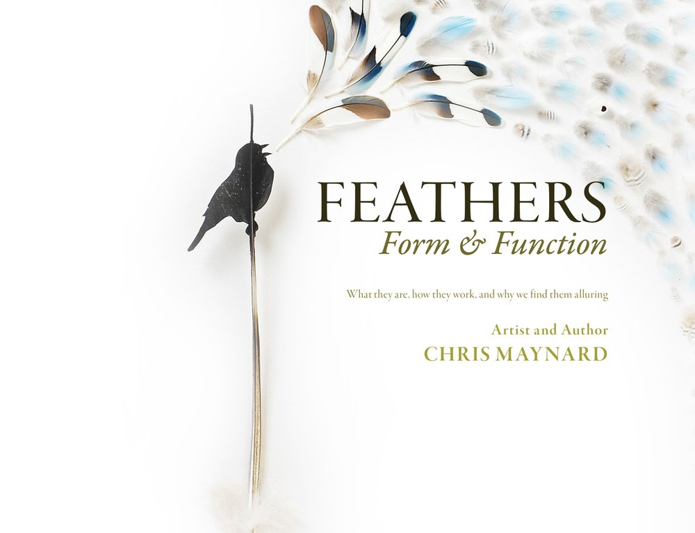 Get your signed copy of   Feathers: Form & Function !