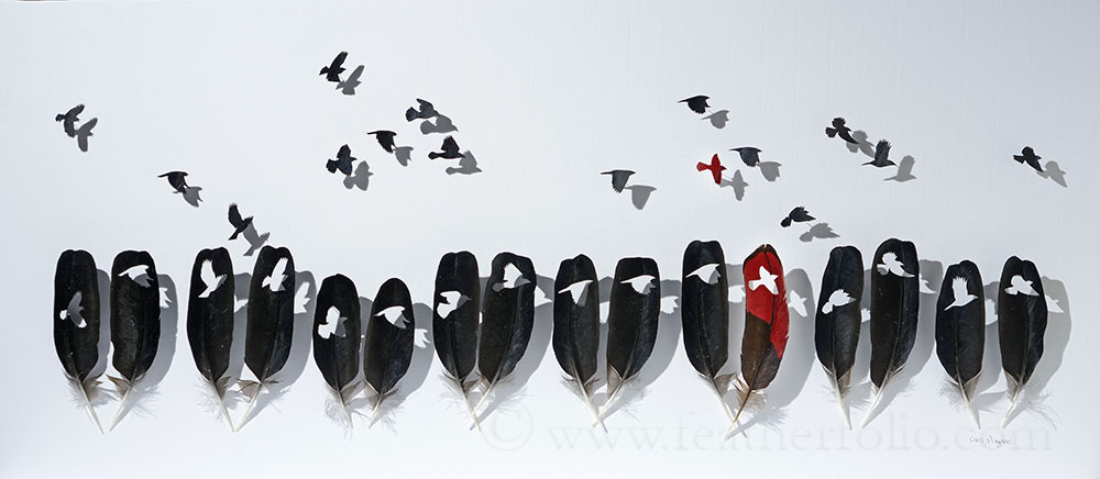 "Redwinged blackbirds, 14"" x 32""."