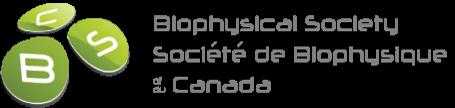 BSC-Logo-Grey.png
