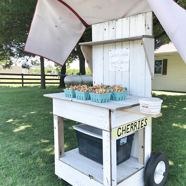 Summer favorite- Rainier Cherries from a road side stand #lancastercofavorites