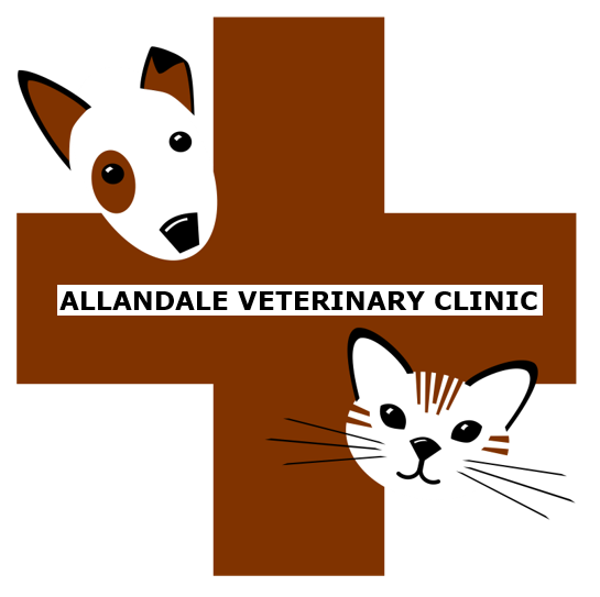 AVC Logo with name.PNG