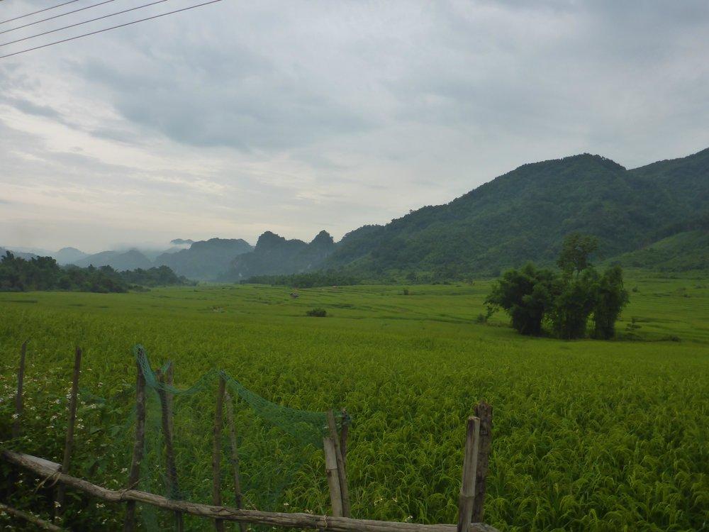 laos-green.jpg