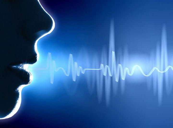 voice reco image.JPG