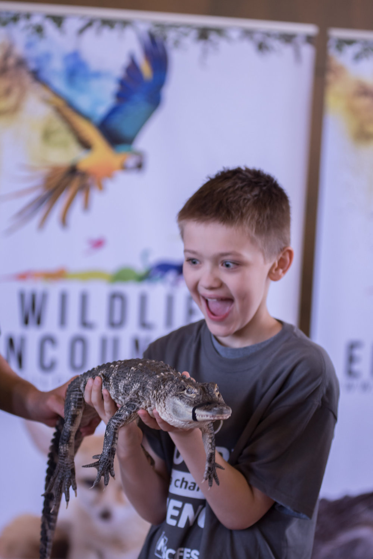 Nebraska Science Festival - Wildlife Encounters