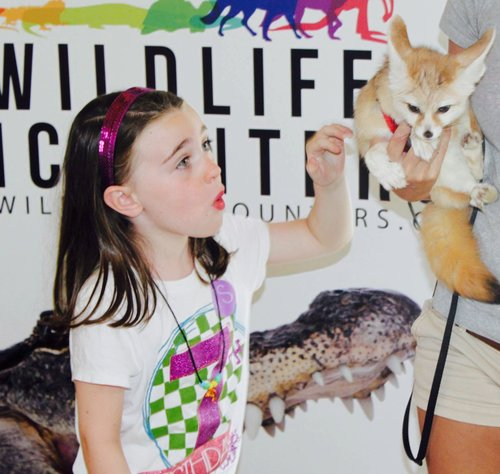 Wildlife Encounters Birthday Parties