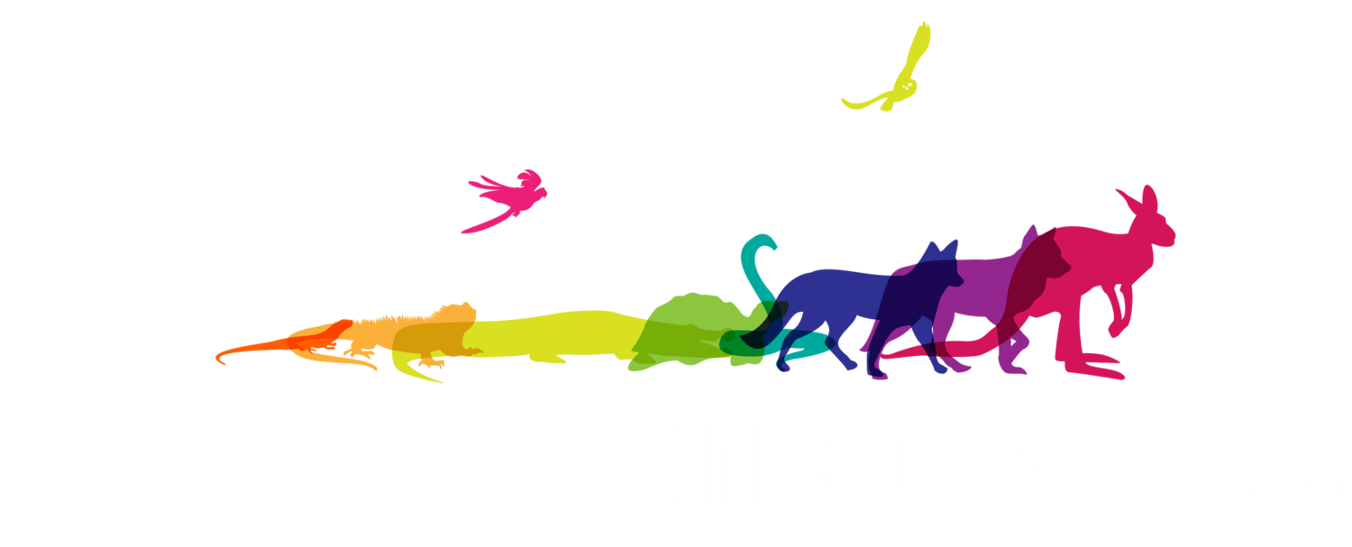 Wildlife Encounters | Wildlife Educational Outreach Programs