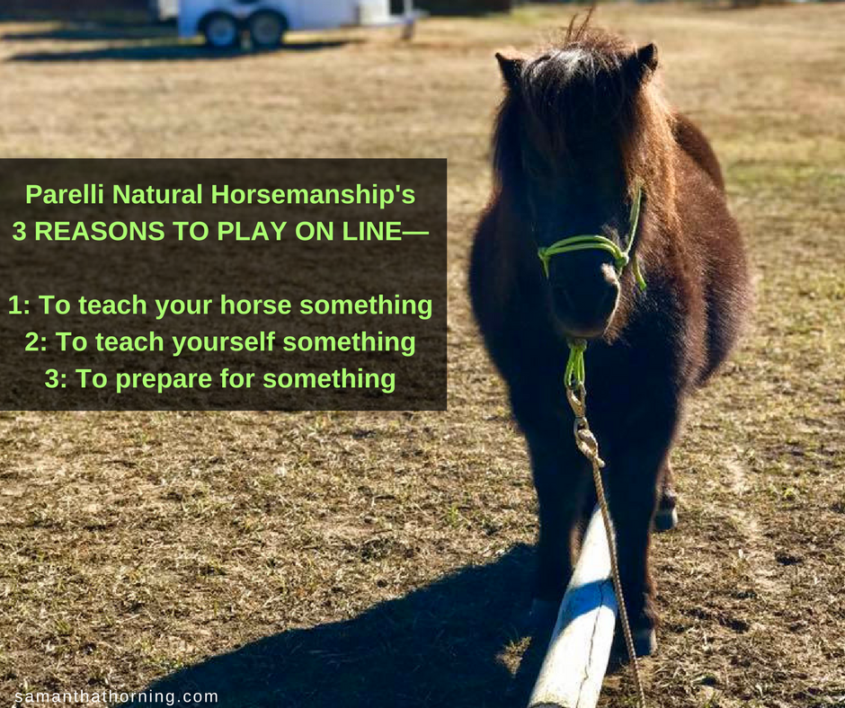 Parelli Natural Horsemanship's3 REASONS TO PLAY ON LINE—1- To teach your horse something2- To teach yourself something3- To prepare for something.png