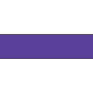 Big bros big sis_logo.png