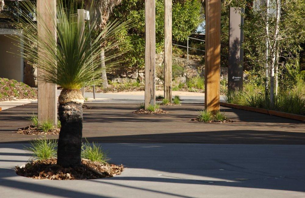Noosa_Junction Station_Guymer_Bailey_Landscape 4.JPG
