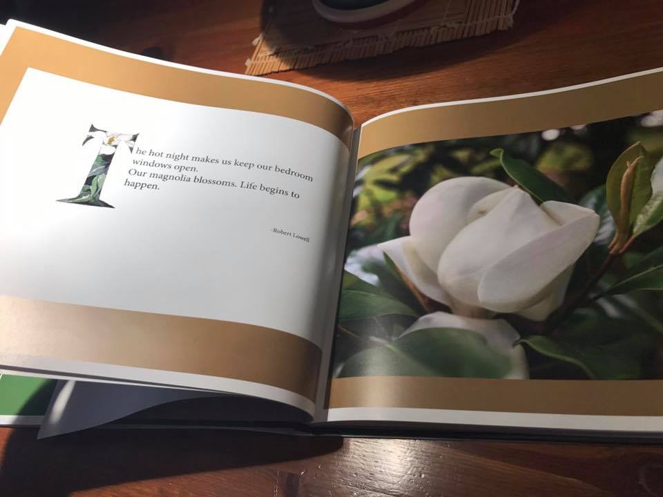 - A book commission which I had been working on for several months of photographs and paintings of a special place with illustrated letters and botanical paintings was finally received by the client. I was thrilled that he shared many of the spreads with his friends and was happy with it.