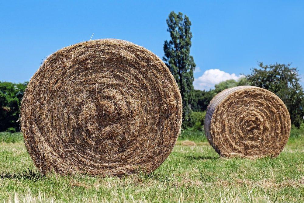 hay-bales-1508813_1920.jpg