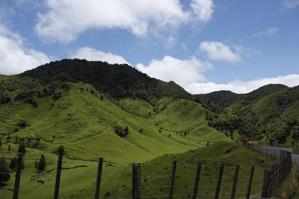 sheep_hill.jpg