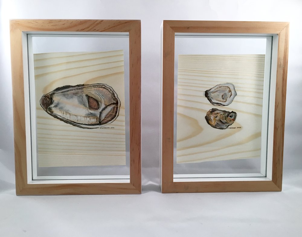 Oyster Series