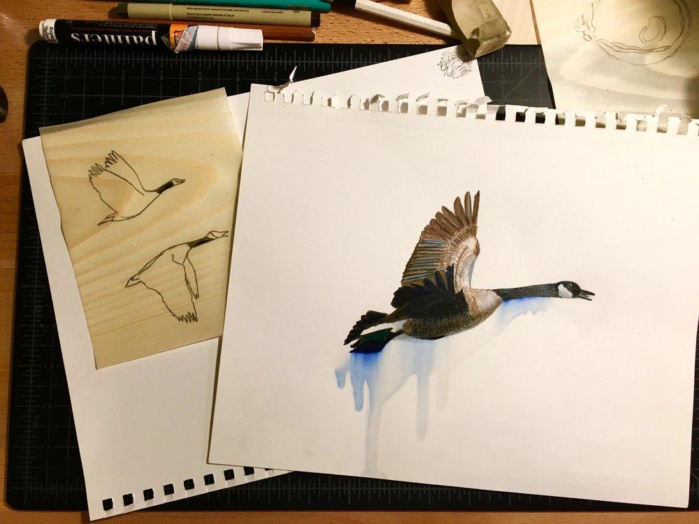 Geese in progress
