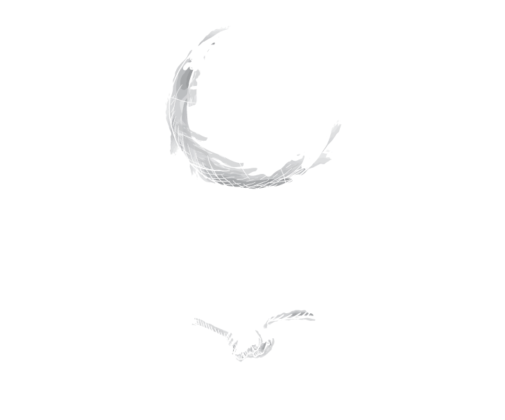 World_Canvas_logo_white.png