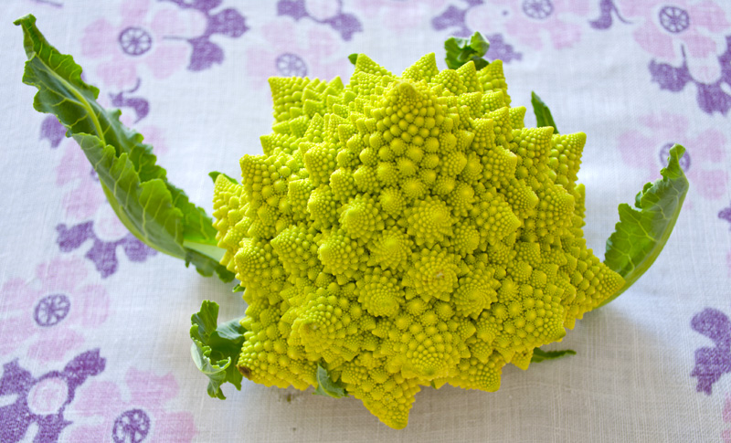 cauliflower_pasta01.jpg