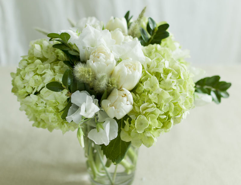 bloomboom7.jpg
