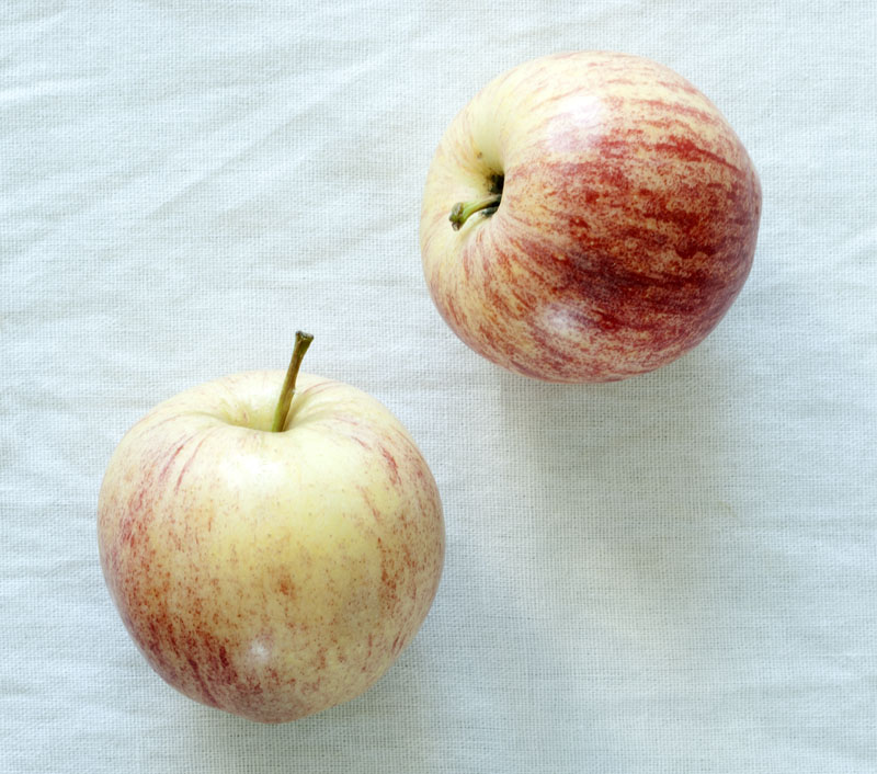 turnips4.jpg