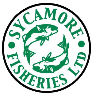 front logo fish copy.png