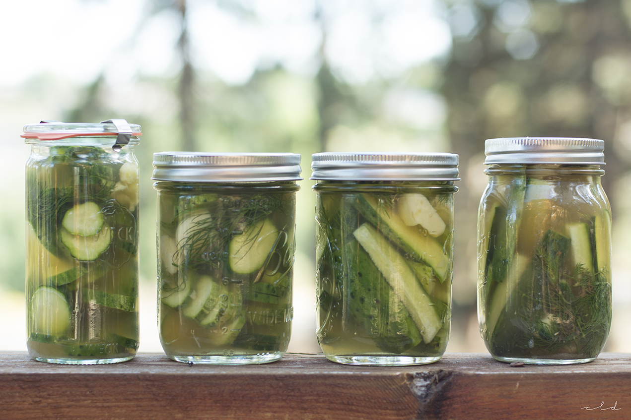 quick & easy refrigerator pickles (AIP/paleo) | it's me, charlotte!