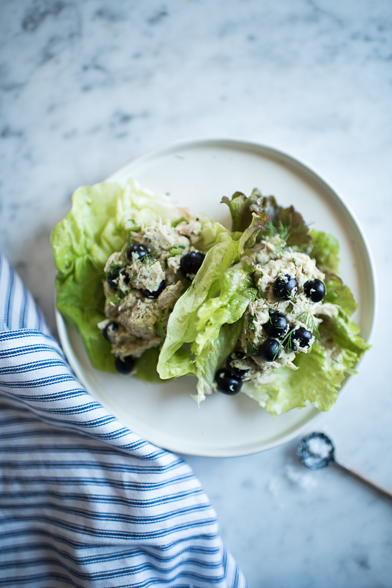 Blueberry Chicken Salad (AIP/Paleo) » itsmecharlotte.com