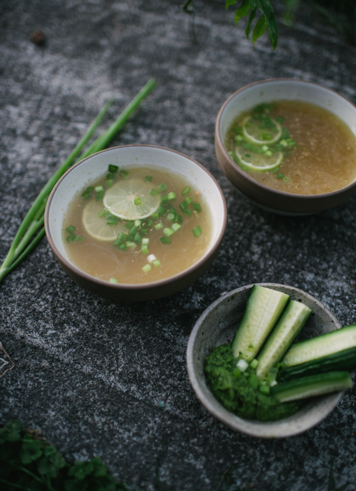 gingered broth with kelp noodles