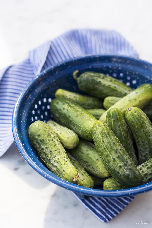 pickles1_72.jpg