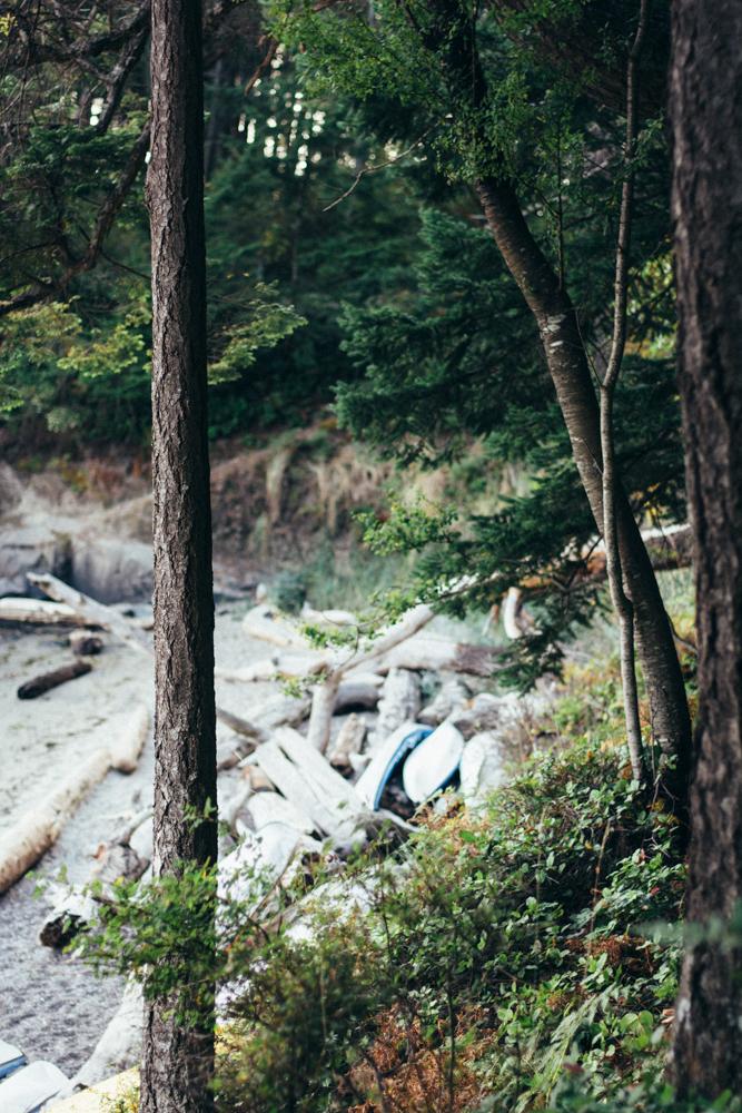 orcasisland-7.jpg