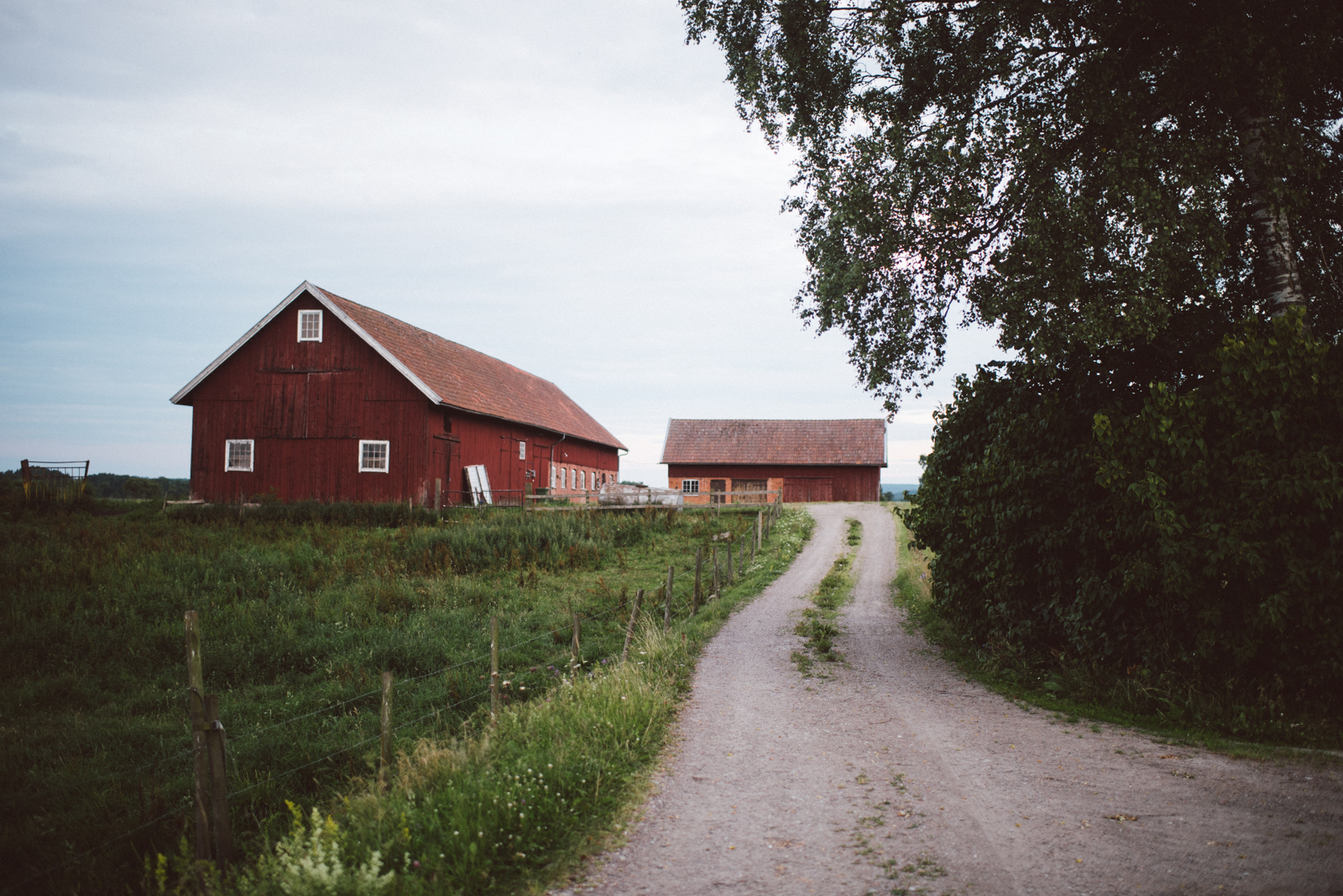 Swedish Countryside Roadtrip