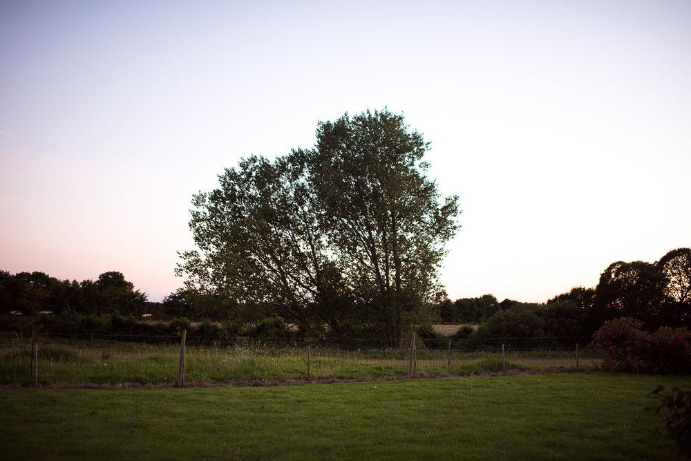 SvendborgSS-24.jpg