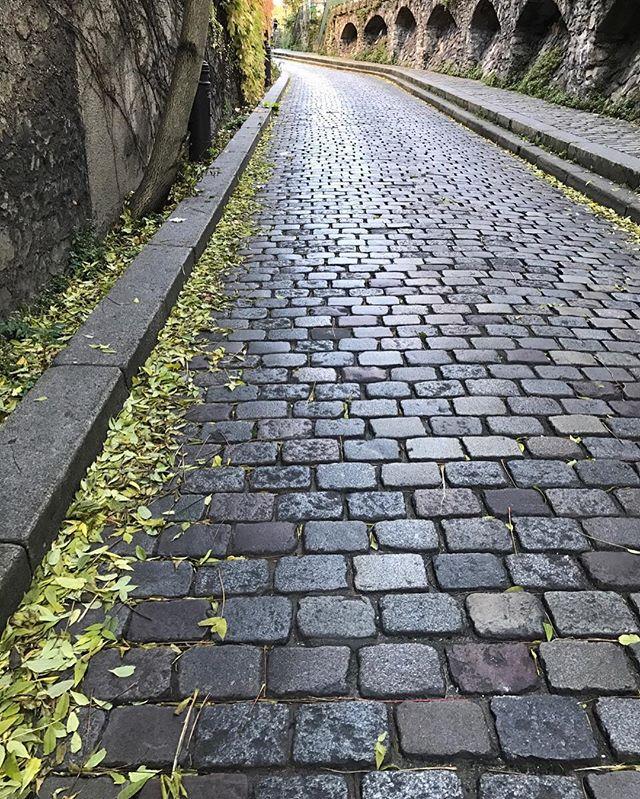 road #autumn http://ow.ly/lxSn306kFCN