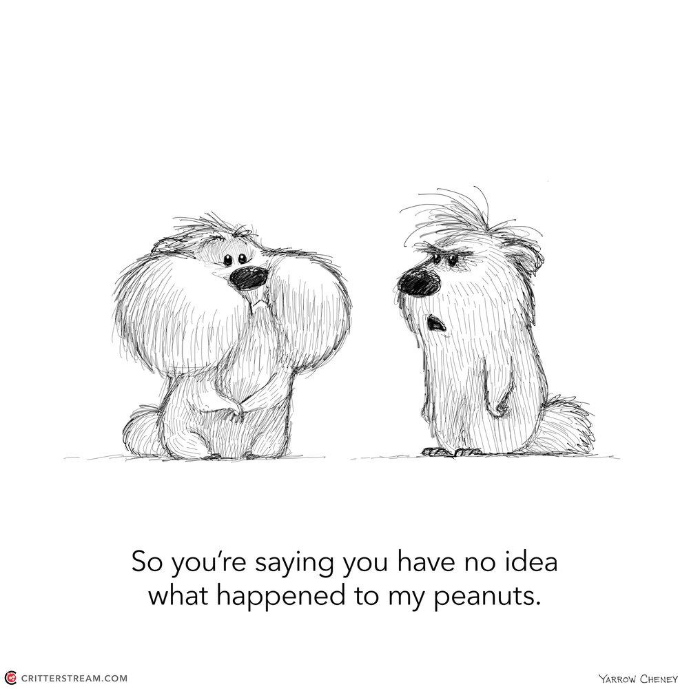 001 peanuts.jpg
