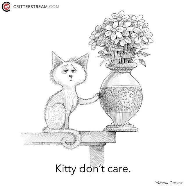 So true. #cat