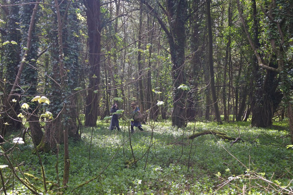 My lovely friends Emily Slead of Hunting Ground Films and Tara Wharton of Freckled Floral on a spring time forage in the woods.  Photo by: Claire Bowen