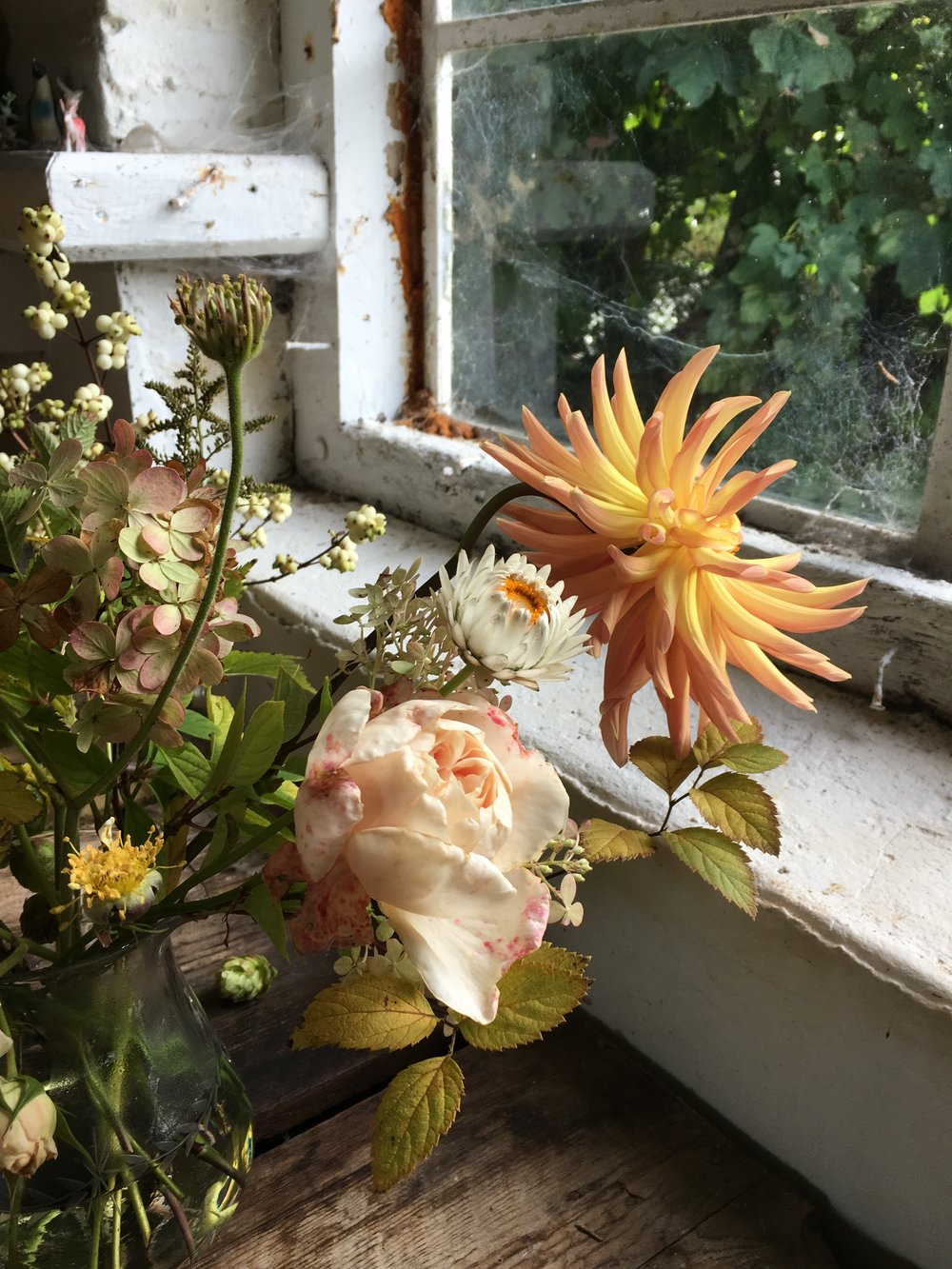 Flowers waiting in The Blue Carrot's studio.   Photo by Claire Bowen