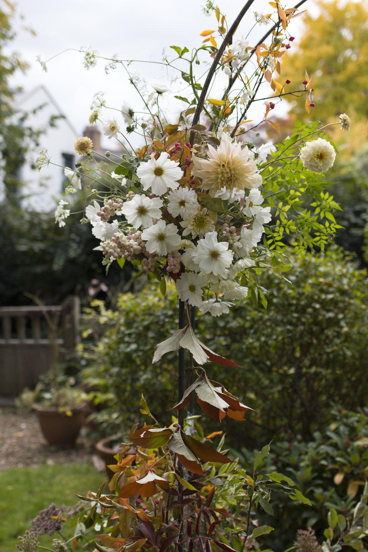 Last of the season's flowers  Flowers by: Honeysuckle and Hilda/ Aesme Flowers  Photo by :Aesme Flowers