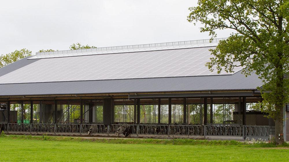 zonnepanelen boerenschuur zakelijk