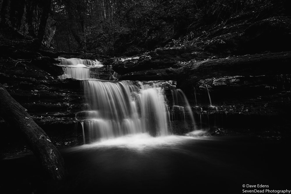 bucks pocket state park 3.jpg