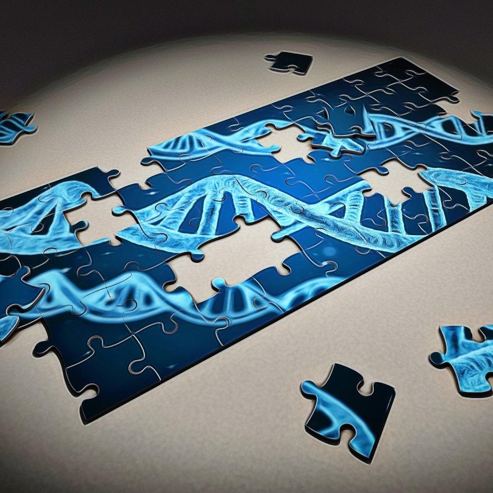 puzzle-2500333_1920 (1).jpg