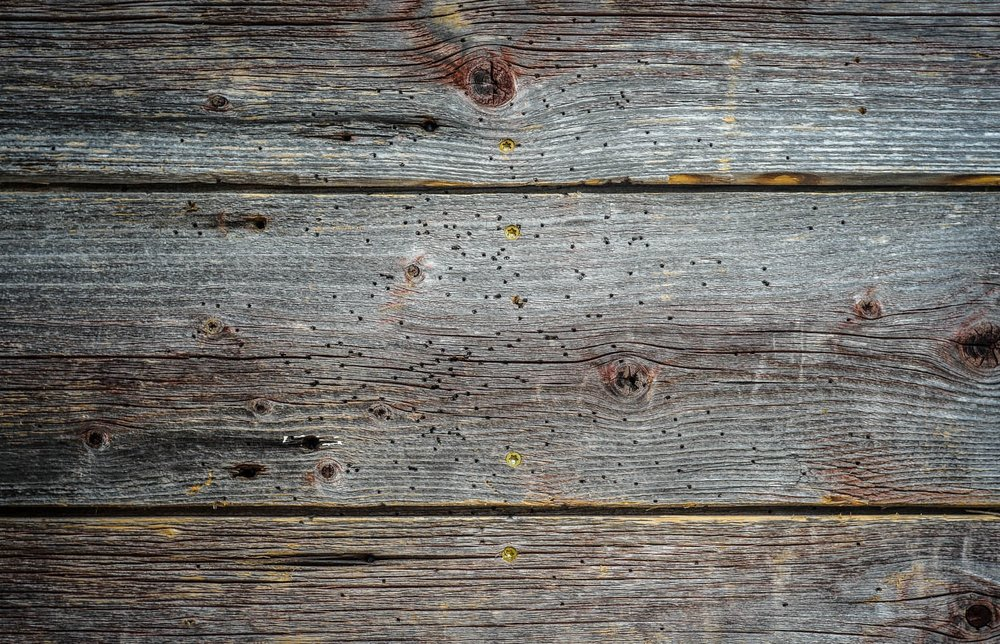 Reclaimed and New Wood for Walls & Ceilings -