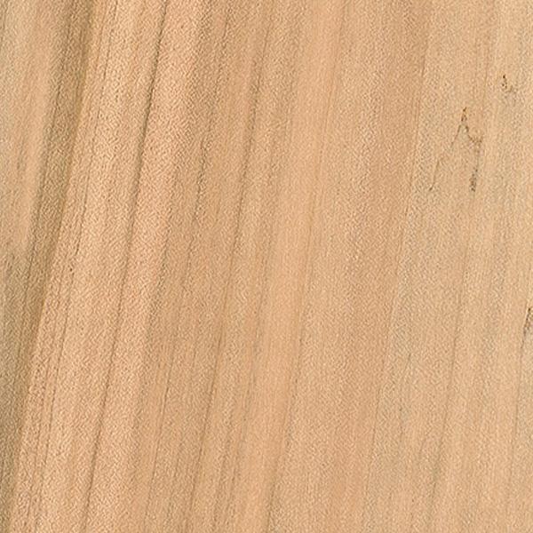 Soft Maple - 4/4