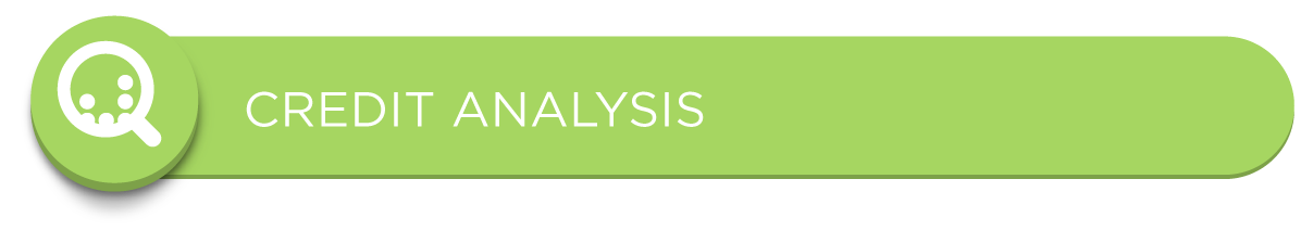 Solutions for Credit Analysis