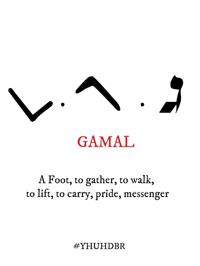 Gimal